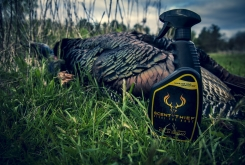 scent-thief-turkey_1